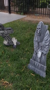 Spooky Scary stuff at the dog walk in my Sin City community - Royal Hopper