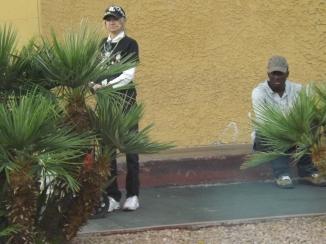 Hiding in the bushes- Royal Hopper