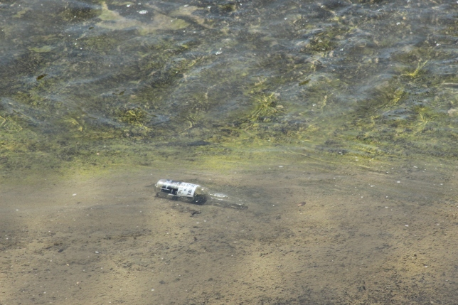 bottle in the river.JPG